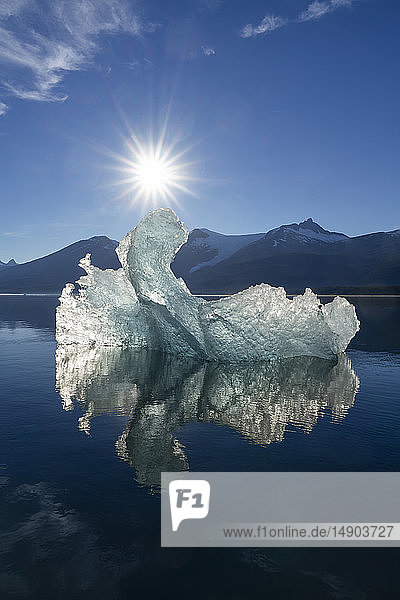 Iceberg and reflection at sunrise  Tracy Arm-Fords Terror Wilderness  Tongass National Forest  Southeast Alaska; Alaska  United States of America