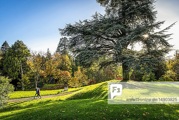 Two women walking with a dog on a path along lush grass and autumn coloured landscape  Birr Castle; County Offaly  Ireland