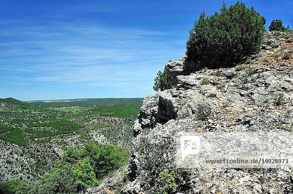 Alto Tajo Natural Park. Huertahernando town,  Guadalajara province,  Spain.