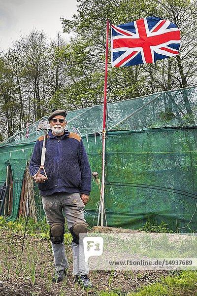EDWARD BALES  ages 72  from Stevenston. Plot 88  Eglington Gardens  Kilwinning  Eglinton Growers Allotments  Kilwinning  Ayrshire  Scotland  UK.