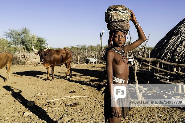 Young Himba girl collecting cow dung to plaster the walls of her hut.