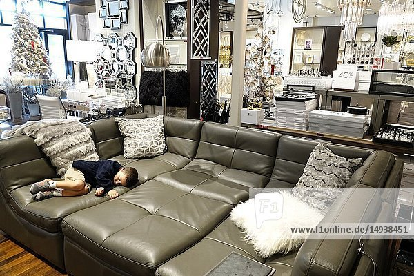 Florida  Fort Ft. Lauderdale  Pembroke Pines  Shops At Pembroke Gardens mall  shopping  Z Gallerie  inside  home decor  display sale  furniture  boy  sleeping napping tired