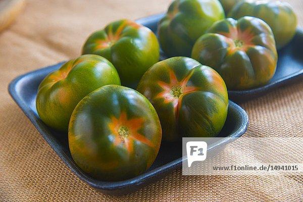 Raf tomatoes. Still life.