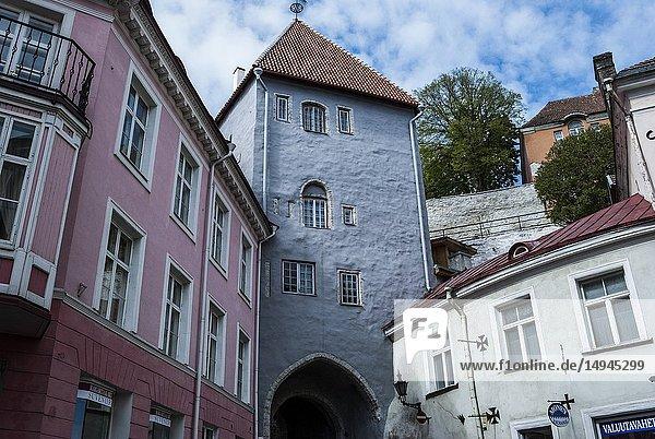 Long Leg (Boot) Gate Tower (Pikk Jalg)  Old Town  Tallinn  Estonia  Baltic States.