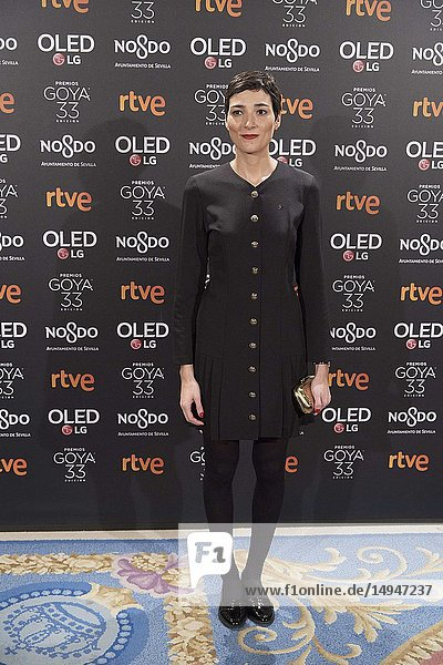 Isabel Pena attends the candidates to Goya Cinema Awards 2017 dinner party at Royal Teatheron January 14  2019 in Madrid  Spain