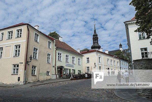 Architecture  Old Town  Tallinn  Estonia  Baltic States.