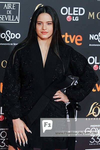 Rosalia attends the Spanish Cinema awards Goya 33rd edition at FIBE attends 33rd Goya Cinema Awards 2019 at Palacio de Congresos y Exposiciones FIBES on February 3  2019 in Sevilla  Spain.02/02/2019.