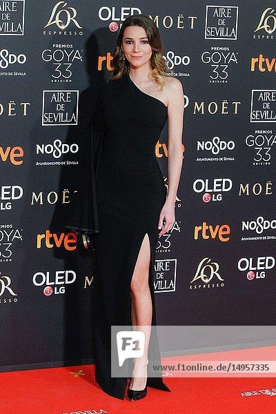 Attends the Spanish Cinema awards Goya 33rd edition at FIBE attends 33rd Goya Cinema Awards 2019 at Palacio de Congresos y Exposiciones FIBES on February 3  2019 in Sevilla  Spain.02/02/2019.
