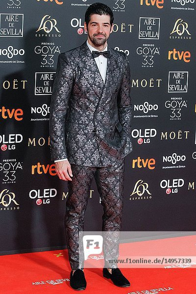 Miguel Angel Muñoz attends the Spanish Cinema awards Goya 33rd edition at FIBE attends 33rd Goya Cinema Awards 2019 at Palacio de Congresos y Exposiciones FIBES on February 3  2019 in Sevilla  Spain.02/02/2019.