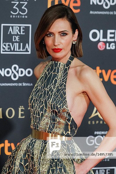 Nieves Alvarez attends the Spanish Cinema awards Goya 33rd edition at FIBE attends 33rd Goya Cinema Awards 2019 at Palacio de Congresos y Exposiciones FIBES on February 3  2019 in Sevilla  Spain.02/02/2019.