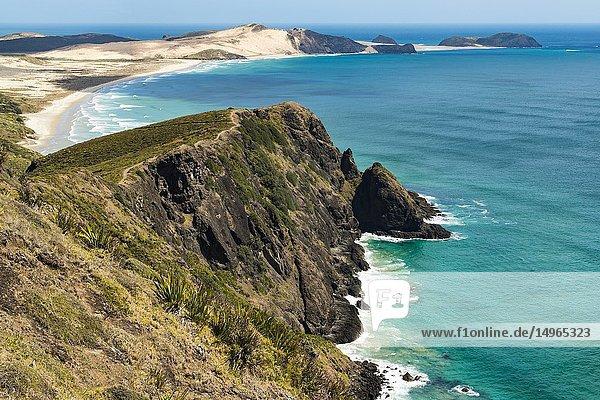 Cape Reinga  Northland  New Zealand.