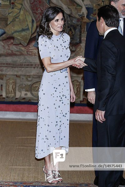 King Felipe VI of Spain  Queen Letizia of Spain  Martin Alberto Vizcarra Cornejo  President of Peru host a reception at El Pardo Palace on February 28  2019 in Madrid  Spain.28/02/2019.