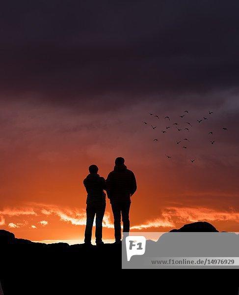 Couple watching the sunset at Grotta  Reykjavik  Iceland.