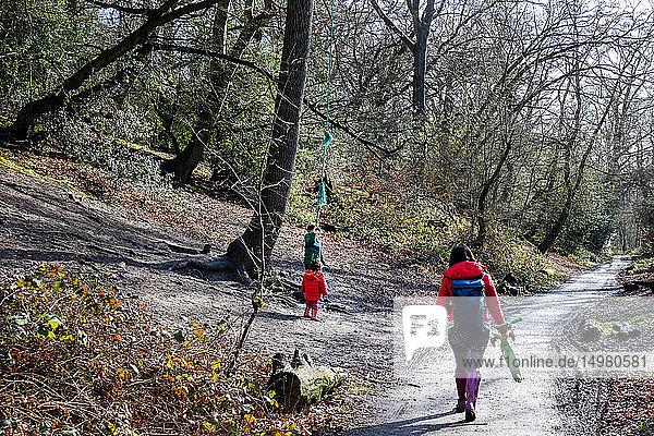 Mutter und zwei Söhne gehen und spielen am Waldweg  Rückansicht