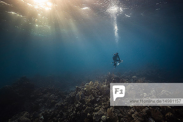 Male underwater photographer looking down toward sea bed,  Exuma,  Bahamas
