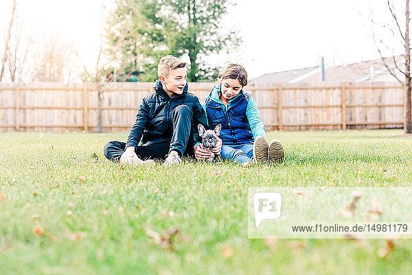 Kinder spielen mit Welpen auf Gras