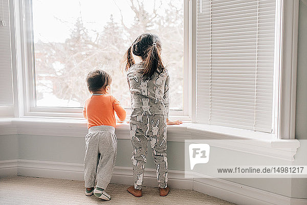 Girl and baby brother looking through living room window  rear view