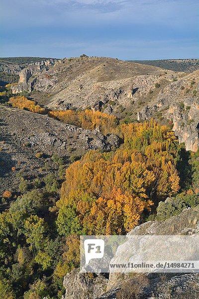 Autumn in the Parque natural del Barranco del Río Dulce  guadalajara province  Castile-La Mancha  Spain