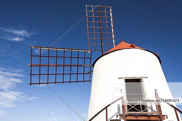 The mill of the cactus garden. Guatiza  Lanzarote. Spain.