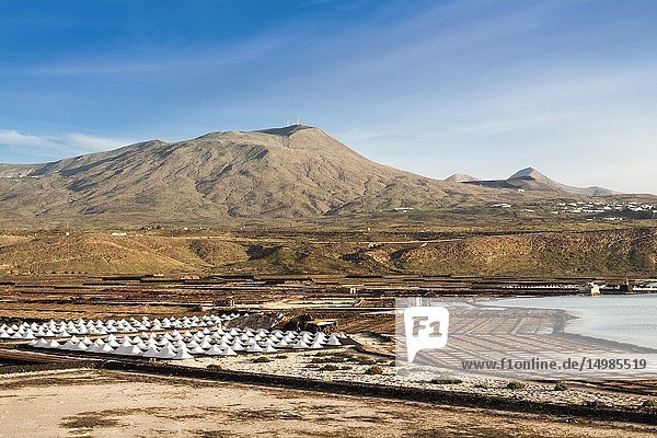 Panorama of the saltworks created by man. Salinas de Janubio  Lanzarote. Spain.