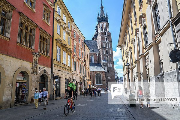People walking and enjoying themselves along the cobblestone streets of Main Market Square in Krak—w Old Town with Church of Our Lady Assumed into Heaven (St. Mary's Basilica) looming in background  Lesser Poland Voivodeship  Poland.