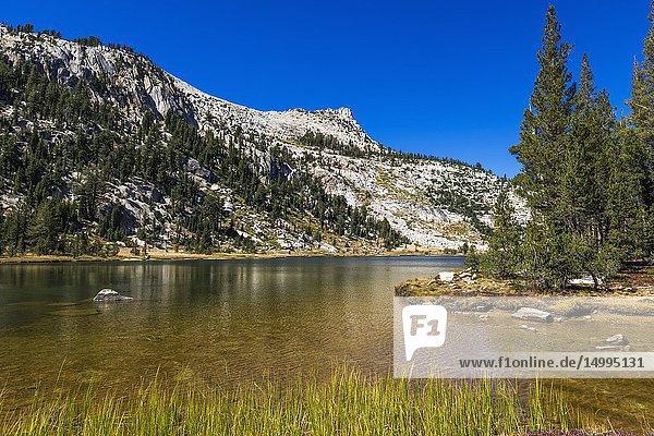 Elizabeth Lake and Unicorn Peak  Tuolumne Meadows  Yosemite National Park  California USA.
