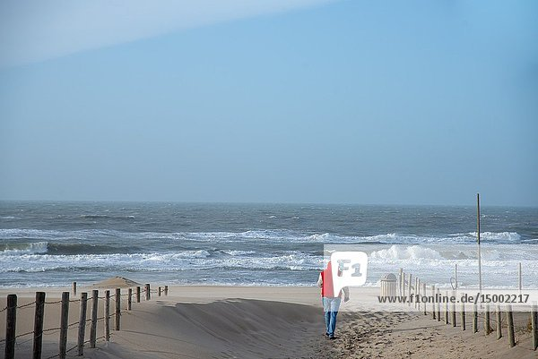 Man walking towards the sea in Holland.