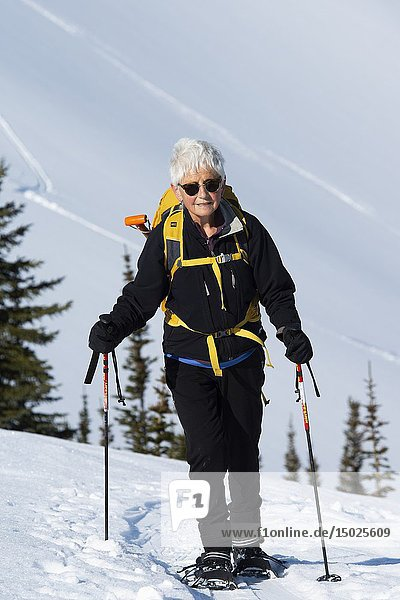 Woman snowshoer  72  climbs up Parker Ridge  Banff National Park  Alberta  Canada.