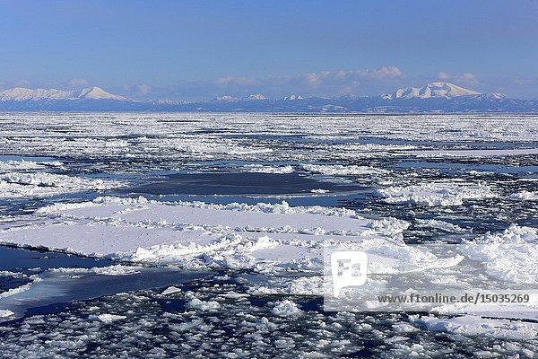 Abashiri ice drift in cold ocean in Hokkaido  Japan  Asia.
