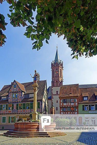 Marienbrunnen  Ladenburg  Baden-Württemberg  Deutschland  Europa