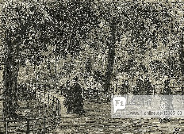 'The Flower Walks  Kensington Gardens'  c1876. Creator: Unknown.