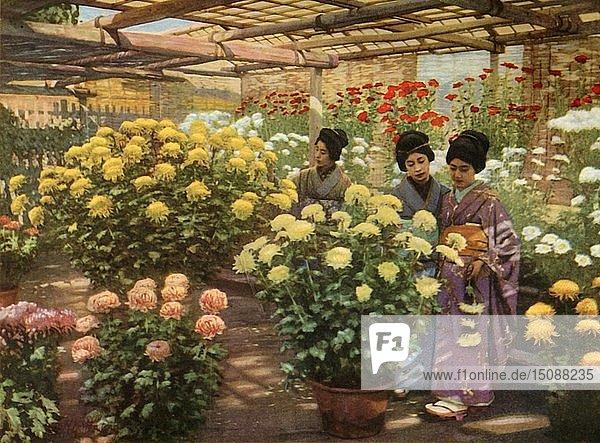 'At the Chrysanthemum Show'  1910. Creator: Herbert Ponting.