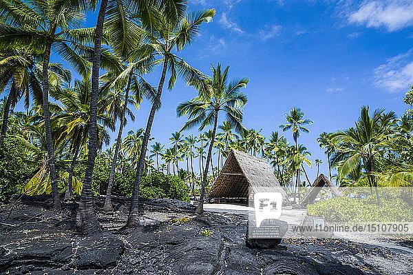 Hawaii  Big Island  Puuhonua o Honaunau National Historical Park  thatched roof house