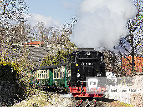 Narrow Gauge Railway  'Rasender Roland'  Sellin  Ruegen  Germany
