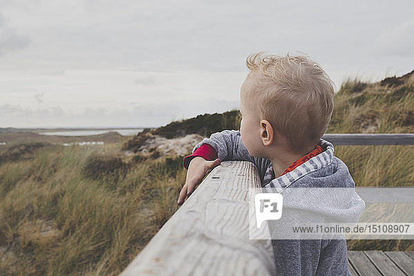 Blond little boy looking at the dunes  Sylt  Germany