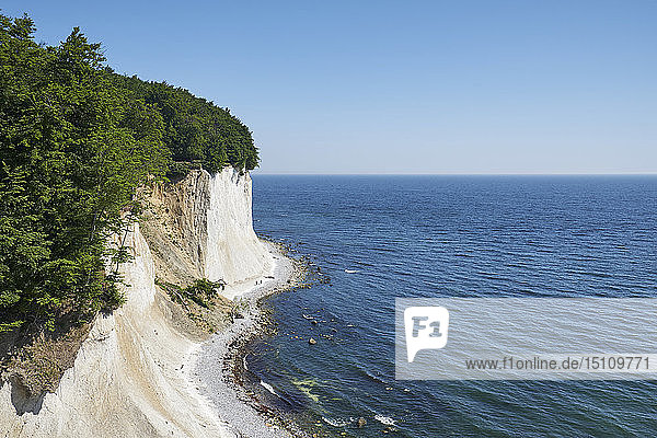 Germany  Mecklenburg-Western Pomerania  Ruegen  Sassnitz  Jasmund National Park  chalk coast