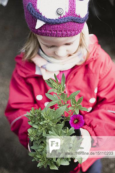 Kleines Mädchen hält Blume im Blumentopf