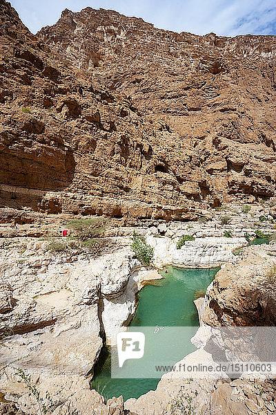 Blick über einen kleinen See im Wadi Shab  Oman