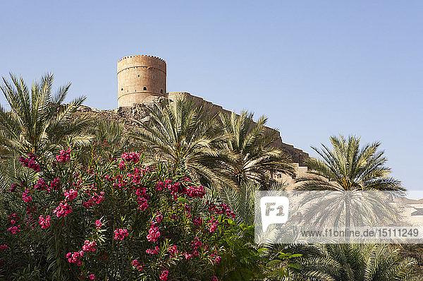 Fort Samail  Samail  Oman