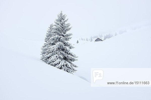 Austria  Salzburg State  Heutal  Sonntagshorn  snow-covered landscape