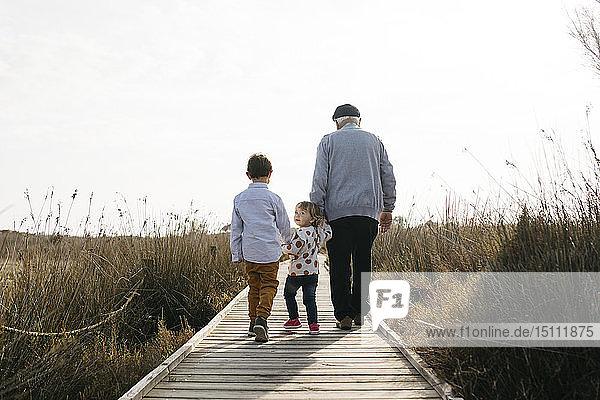 Rückansicht von Großvater und Enkelkindern  die Hand in Hand auf der Strandpromenade spazieren gehen