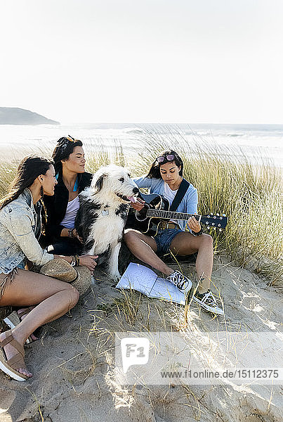 Young woman with friends and dog playing guitar on the beach
