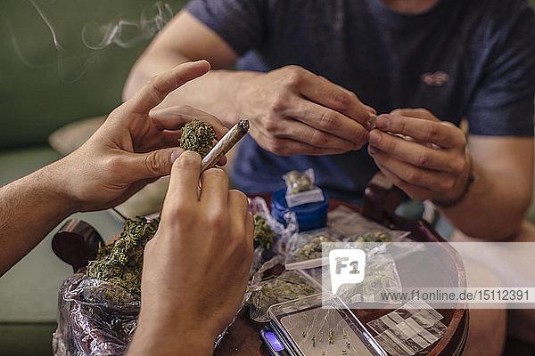 Nahaufnahme von zwei Männern  die Marihuana-Knospen reinigen