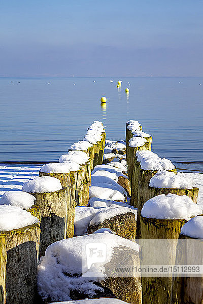 Switzerland  Arbon  Lake Constance  wooden stakes at the lakeshore in winter