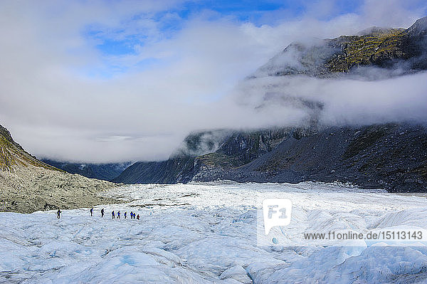 Tourists hiking on Fox Glacier  South Island  New Zealand