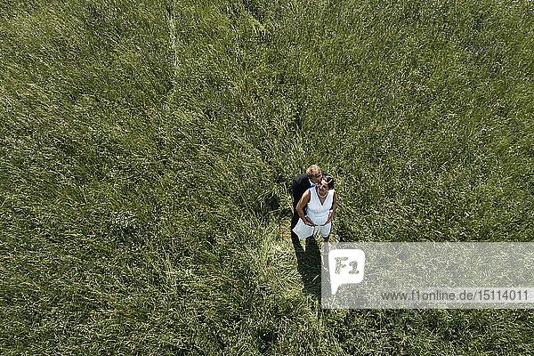 Luftaufnahme einer schwangeren Braut mit ihrem Mann auf einer Wiese