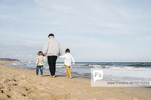 Rückansicht eines Großvaters  der mit seinen Enkelkindern Hand in Hand am Strand spazieren geht