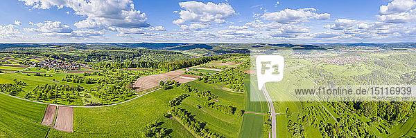 Luftaufnahme der Felder  Schwäbischer Wald  Rems-Murr-Kreis  Deutschland