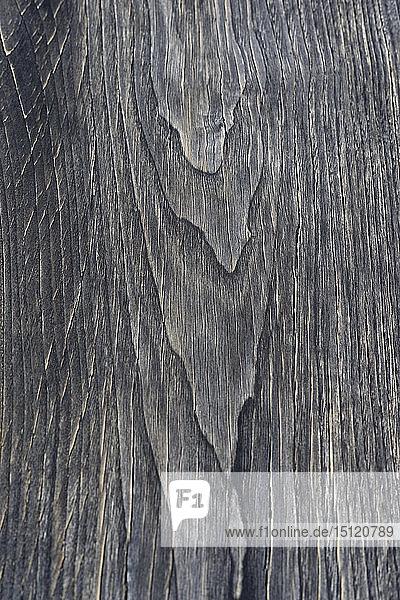 Holzoberfläche  Teakholz  Tectona grandis  Vollrahmen