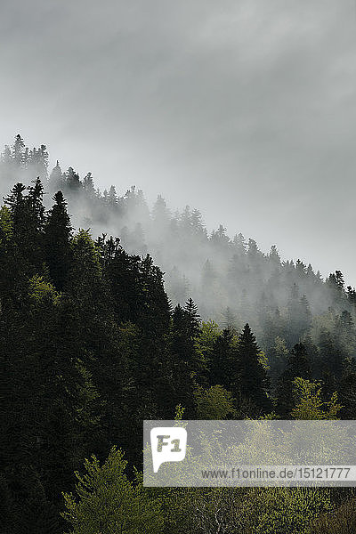 Abstrakte Landschaft der Midi-Pyrenäen  Frankreich
